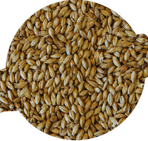 2-row Pale Malt