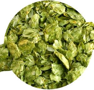 Chinook Leaf Hops