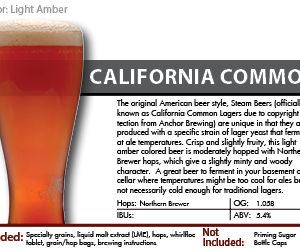 SCBS Steem Beer Recipe Kit