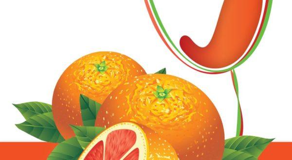 Island Mist Wine Kit - Blood Orange Sangria-2564