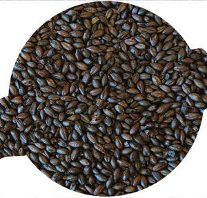 Simpsons Roasted Barley